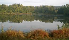 Lowlands at Belmead